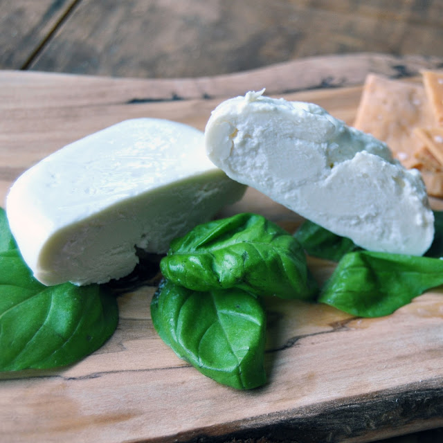 DIY Homemade Burrata Cheese Recipe