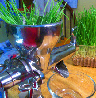 Healthy Living: Wheatgrass Juice with the Weston Wheatgrass Juicer