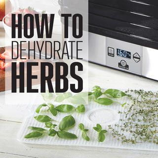 How To Dehydrate Herbs icon